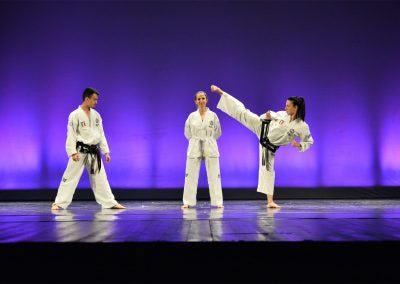 Taekwon-do Assemini